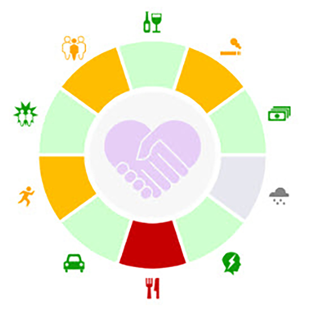 the social determinants of health wheel, showing the ten panels including tobacco use and social interactions.