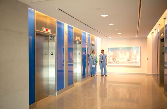Artistic Wayfinding Color Themes And Art For Elevator