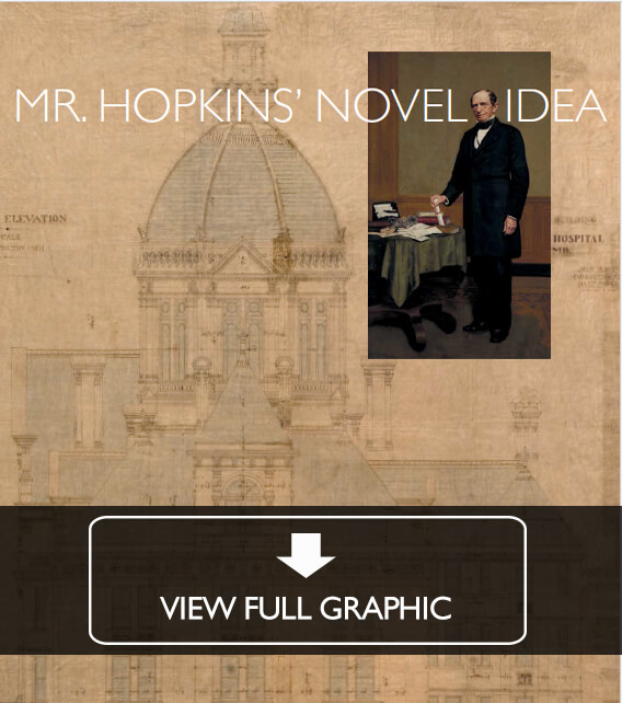 Mr. Hopkins' Novel Idea