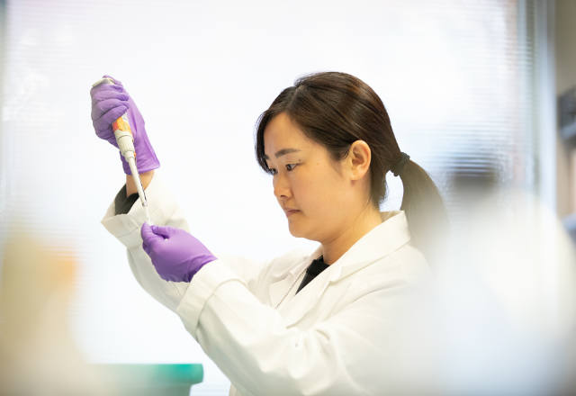 Researchers in lab testing samples