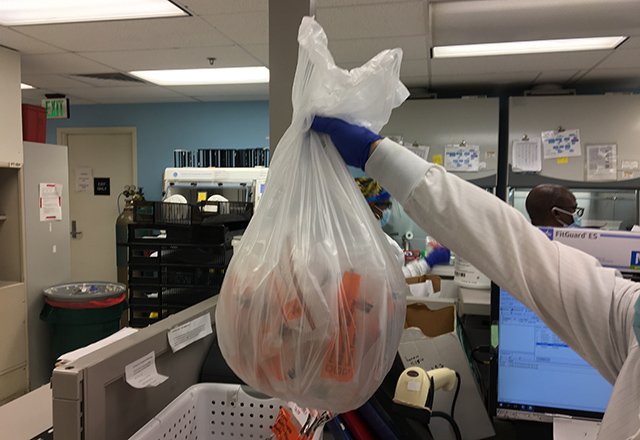 A lab worker holds up a bag full of COVID samples.