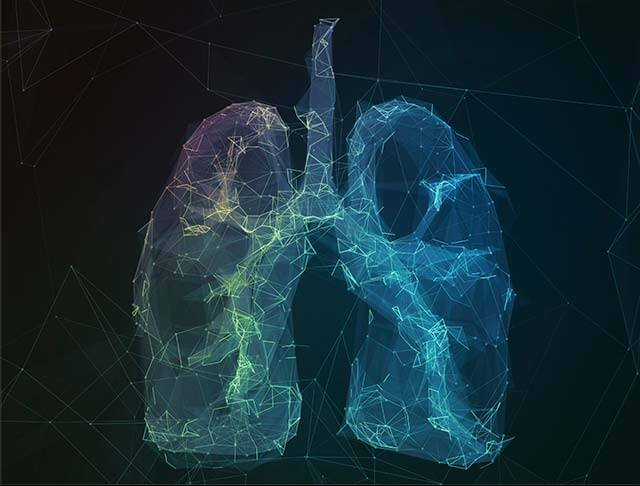 Illustrated lungs