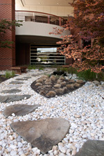 Claudia Mayer Cancer Resource Center Rock Garden