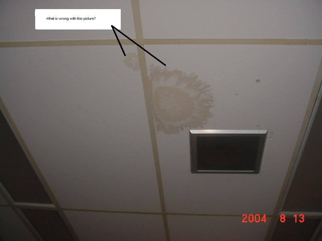 Faq a the main reason why wet ceiling tiles are a problem is because they are breeding grounds for mold if a stained ceiling tile is noticed please call dailygadgetfo Images
