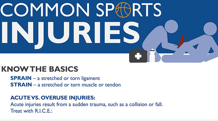 Common Sports Injuries Infographic