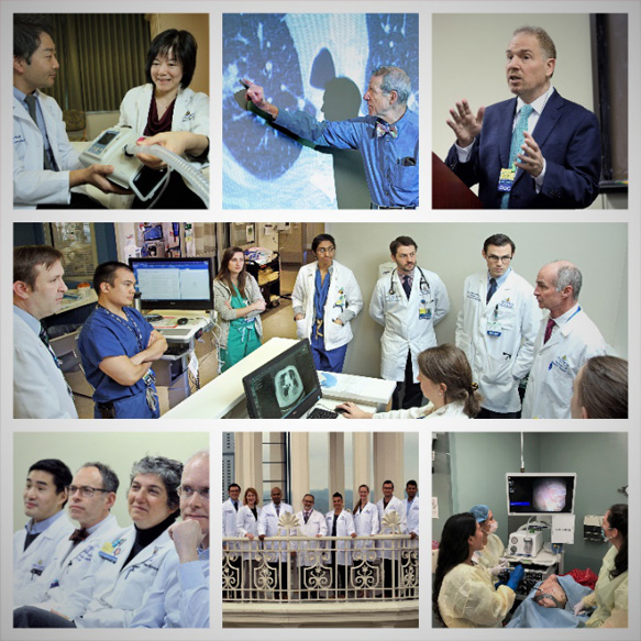 Hands-on training, lectures and conferences for fellows and residents