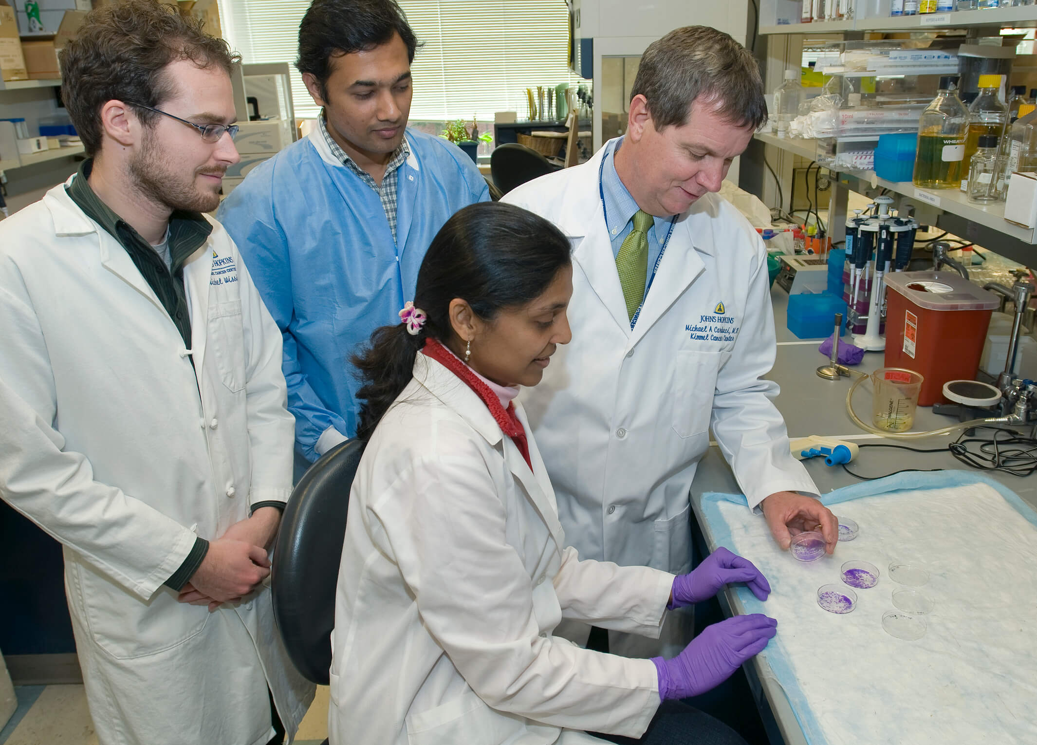 Laboratory scientists at the Johns Hopkins Kimmel Cancer Center