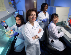 Melanoma Program director Suzanne Topalian, center, with lab members, from left, January Salas, Tracee McMiller and Shuming Chen, work on a therapy to help the immune system attack cancer.