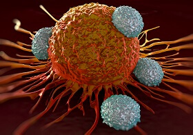 T-cells Attacking a Cancer Cell