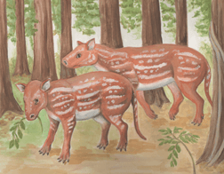 An artist's depiction of Cambaytherium thewissi
