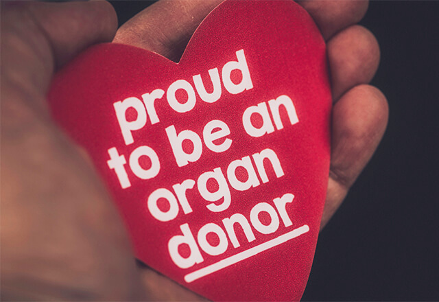 5 myths of organ donation johns hopkins medicine