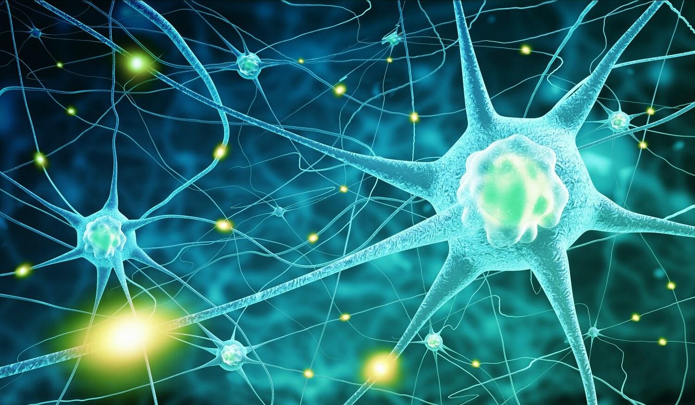 Neuron Synapses Firing