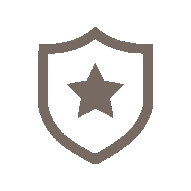 icon of a shield with a star