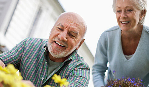Retired couple gardening together.