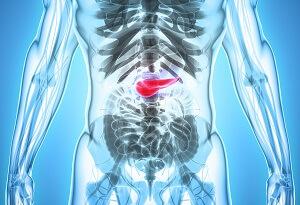 Pancreas, Surgery, Transplant