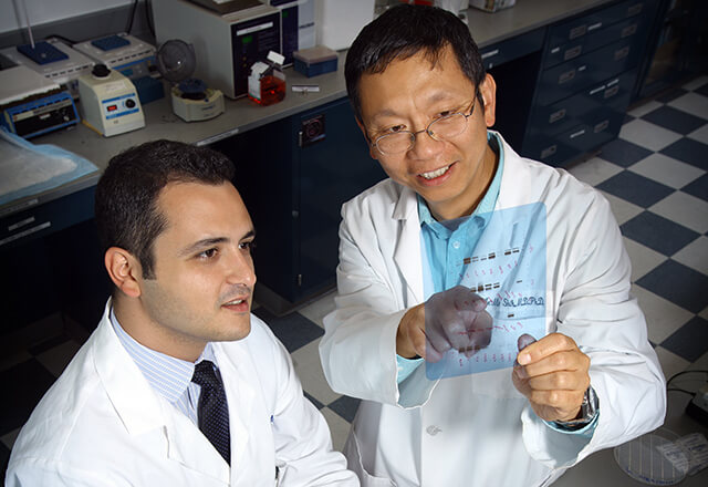 Dr. Shih and a gynecologic oncology fellow in the research lab