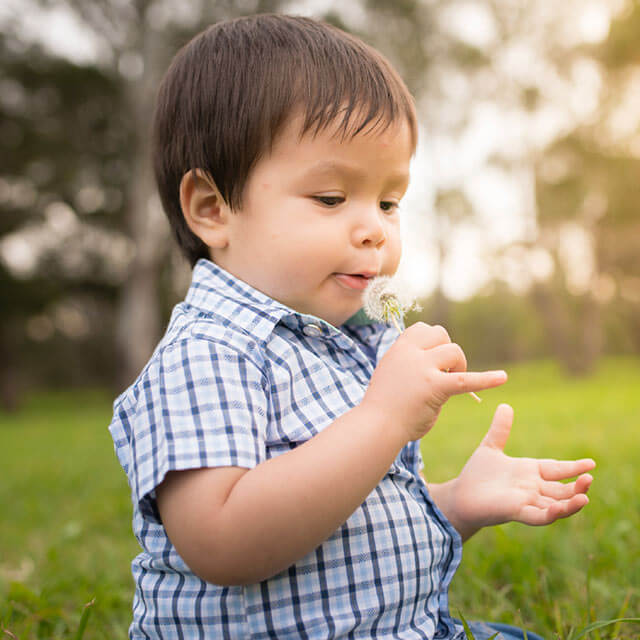 Young boy with a dandelion