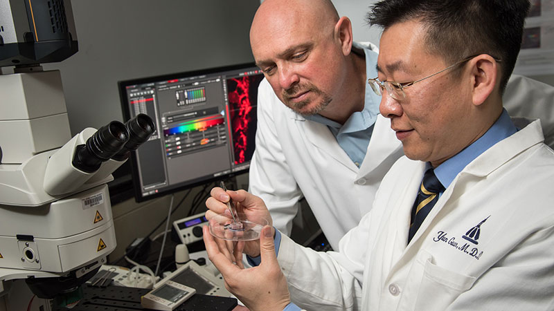Gene Fridman and Yun Guan examine a prototype of a device that delivers direct current safely.