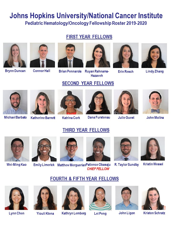 Meet Our Fellows: Johns Hopkins Sidney Kimmel Comprehensive Cancer