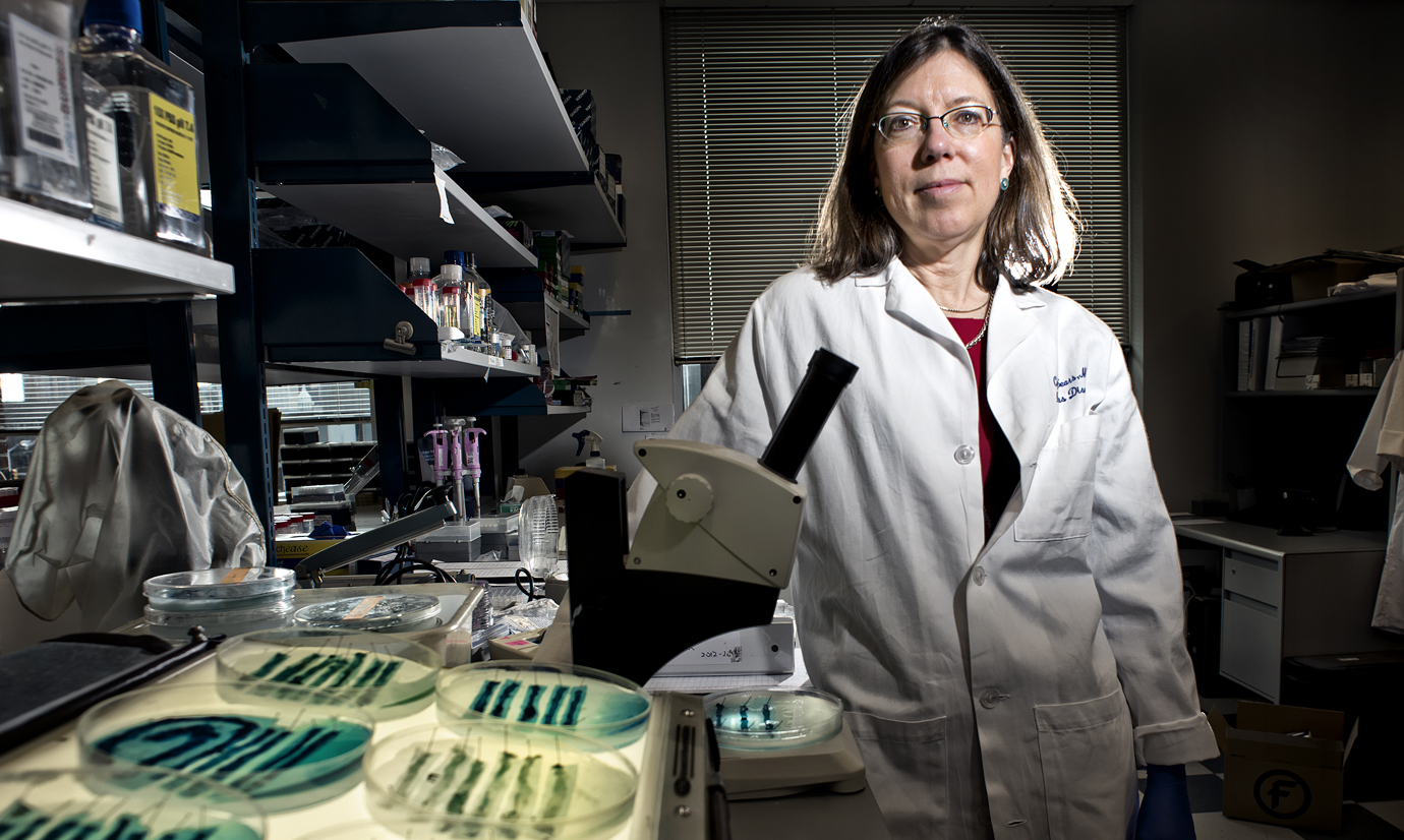 Infectious disease specialist Cynthia Sears is shown in her lab