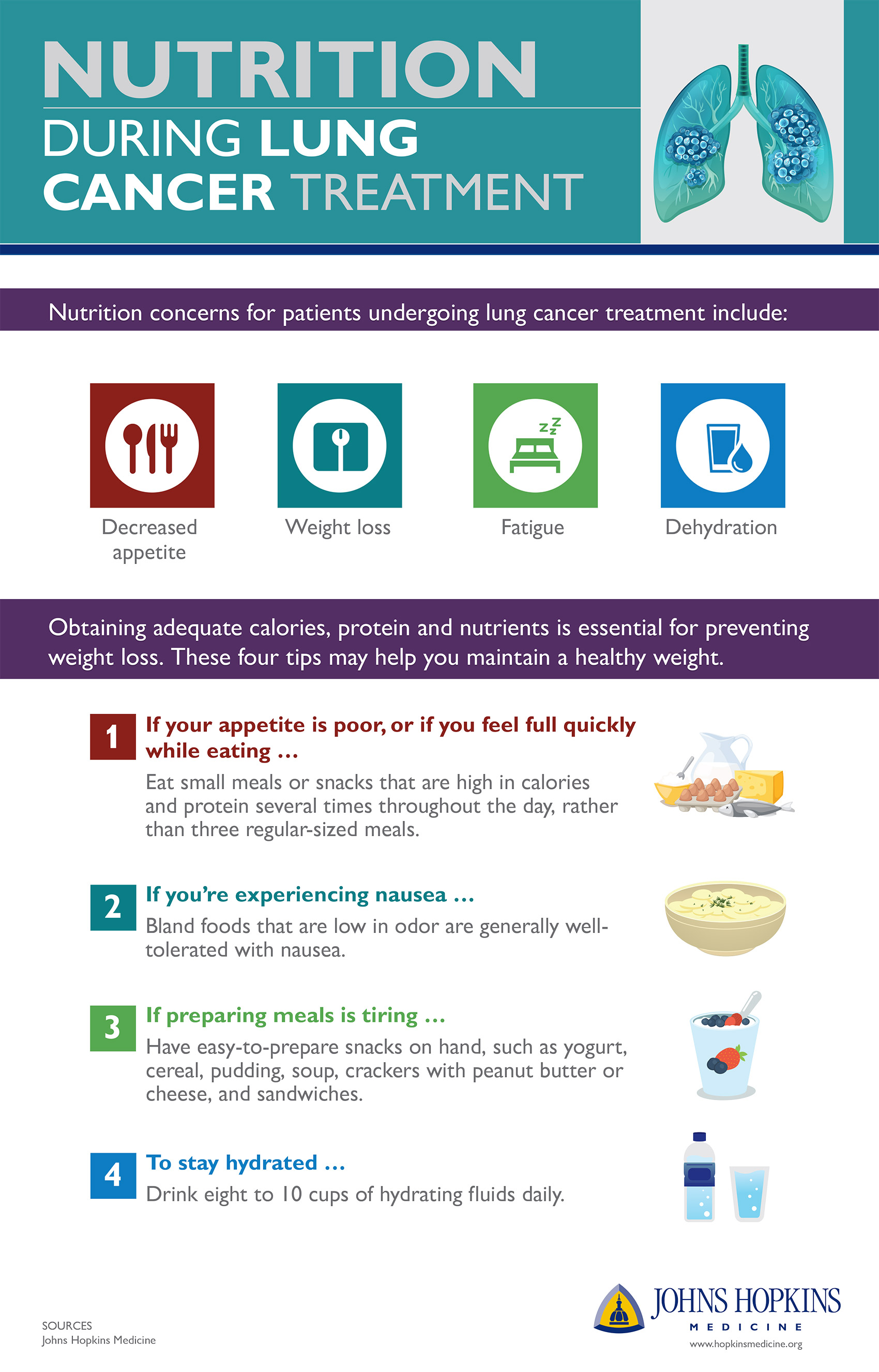 An infographic detailing nutrition during lung cancer treatment.