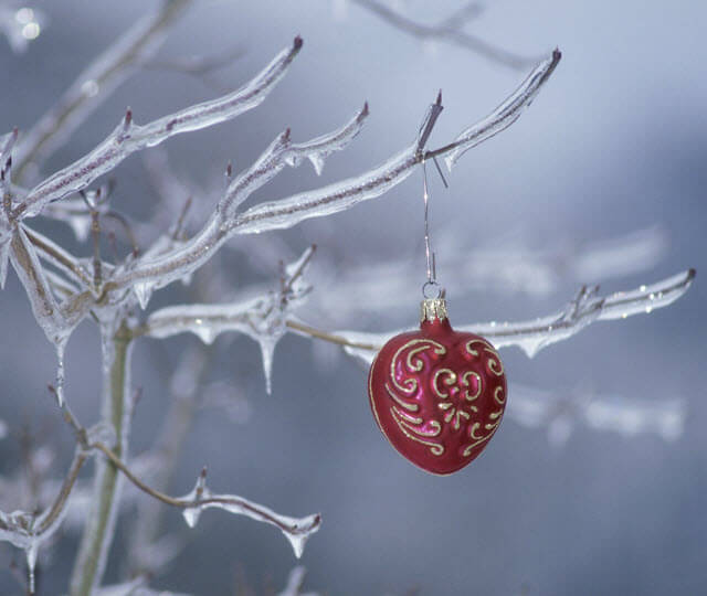 Heart ornament on ice-covered twig
