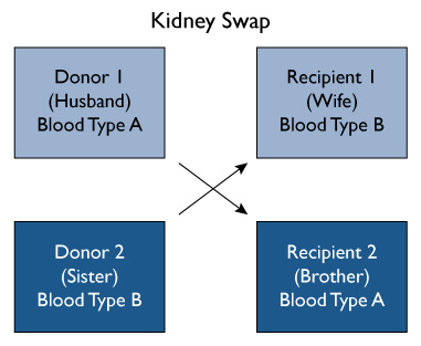 A kidney swap occurs when two donor / recipient pairs exchange kidneys