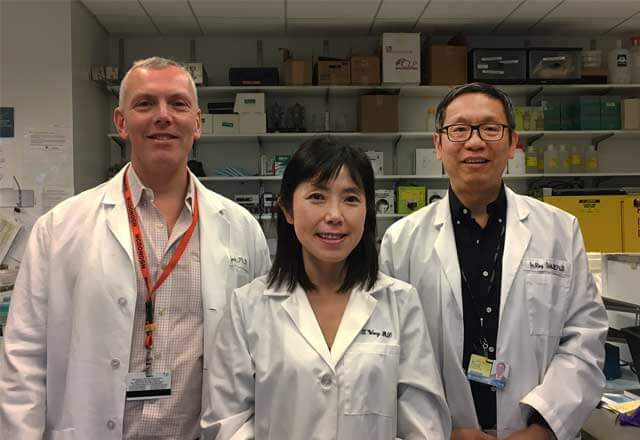 Dr. Richard Roden, Dr. Tian-Li Wang and Dr. Ie-Ming Shih