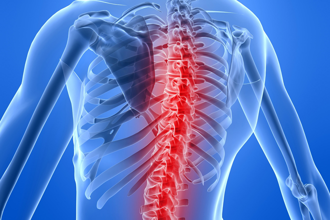 Diagram of spine