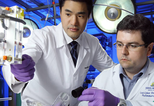 Two researchers working together in a laboratory