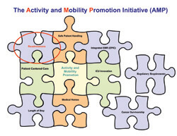 "Erik Hoyer crafted this puzzle graphic to show how activity promotion intersects many aspects of care. ""The time is now,"" he says, ""for mobility initiatives."""