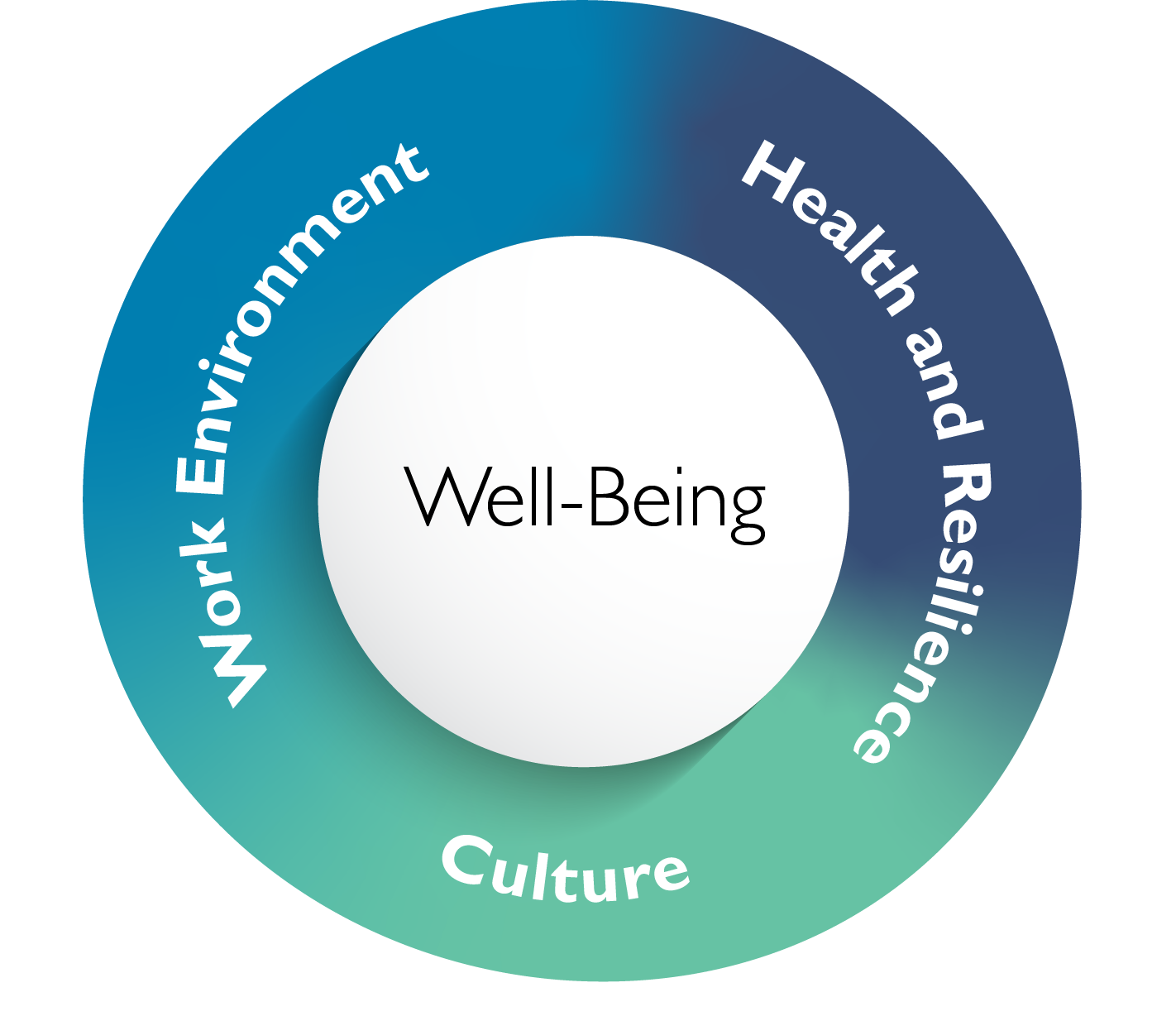 circle graphic with the terms work environment, culture and health and resilience. The word well-being is in the center of the circle.