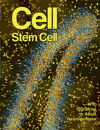Cell magazine, Stem Cell