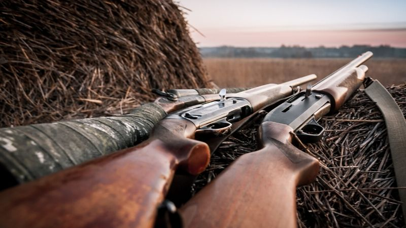Rifles and Shotguns Used More Often in Youth and Rural Suicides