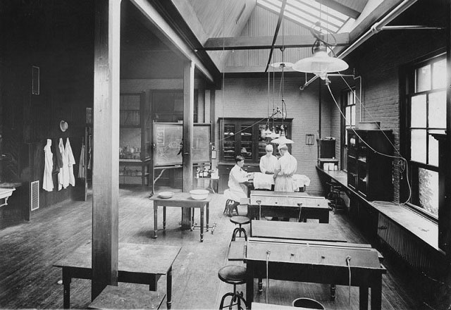Students working in the Hunterian Laboratory, circa 1905