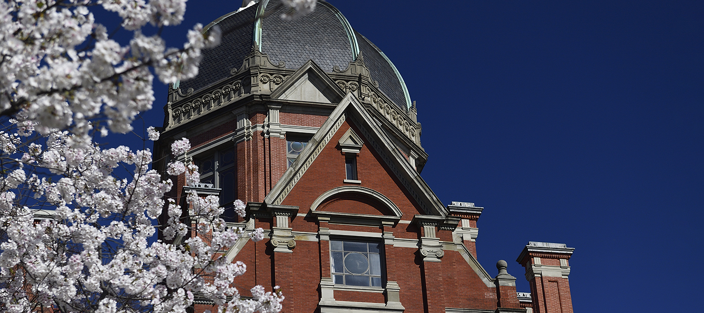 The Dome in springtime.