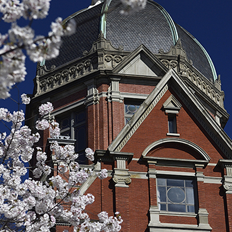 A view of the Dome through springtime blossoms.