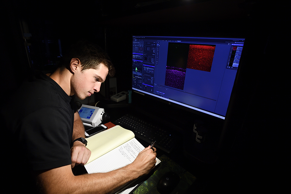 A student writes in a notebook while looking at an imaging scan.