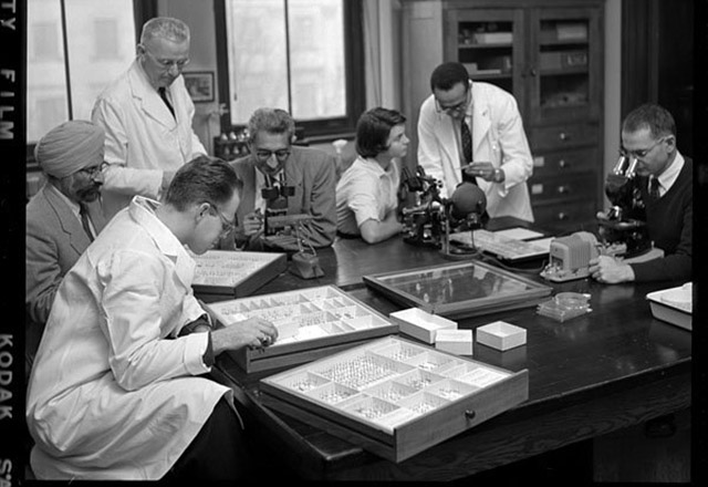 historical photo of doctors looking at slides