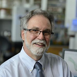 Dr. Semenza