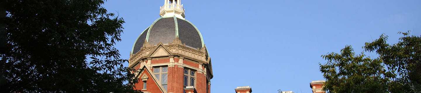 The Billings Dome against a clear blue sky, as seen from between some treetops.