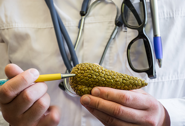 hepato-pancreato-biliary-hpb surgery - doctor pointing to model of pancreas