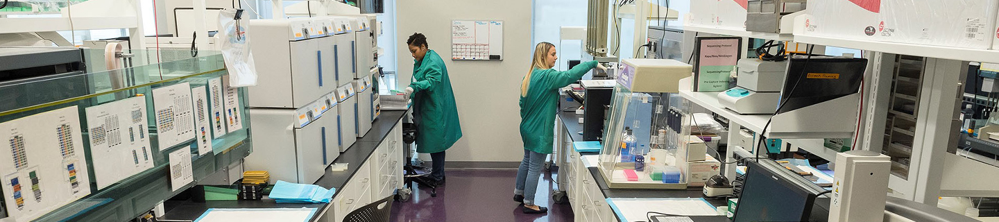 Researchers working in the lab.