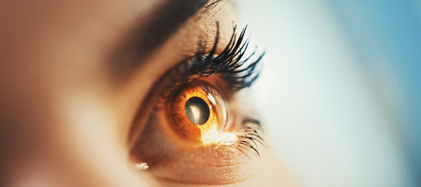 close up of the eye