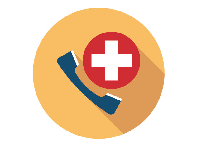 icon image of phone